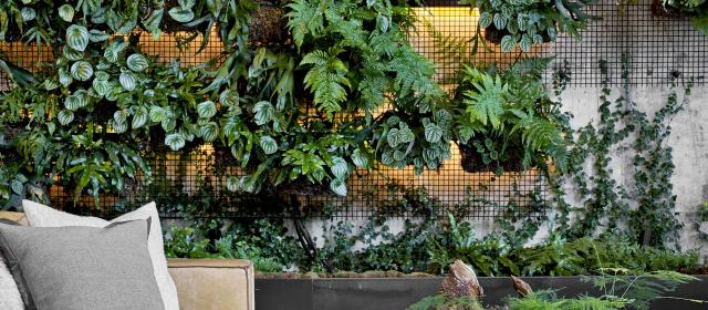 A lounge area with a wall decorated with greenery